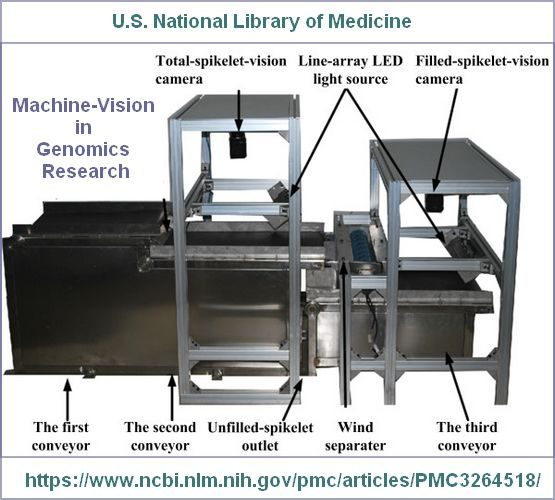 genomics-machine-vision